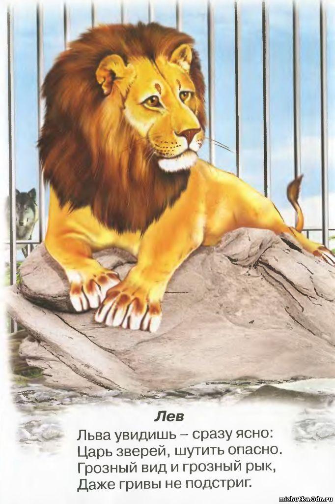 От львицы львице поздравленье